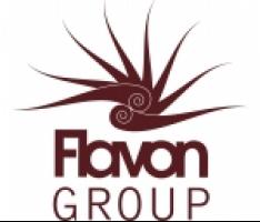 Logo Flavon Group Polska